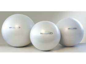 Fitball Pro Maxafe 65cm Fitball lopta