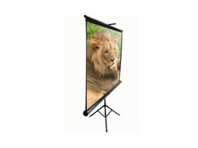 "EliteScreen T85UWS1 85""(1:1)152,4*152,4"