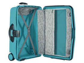 samsonite-cabin-collection-upright-55-cm-es-bo_2261f4f0.jpg